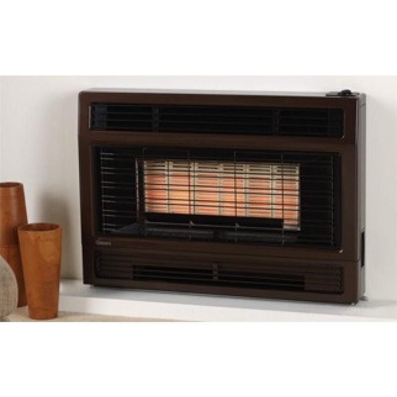 Rinnai Natural Gas Heater